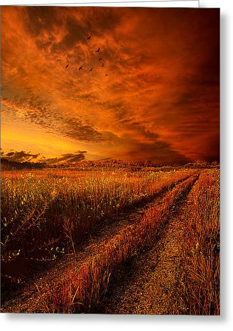 Geese Art Greeting Cards - Finding the Way Home Greeting Card by Phil Koch
