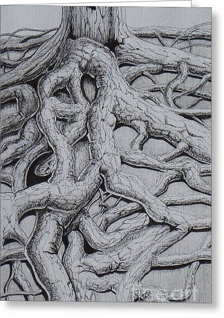 Tree Roots Drawings Greeting Cards - Finding Time Greeting Card by Grant Mansel-James