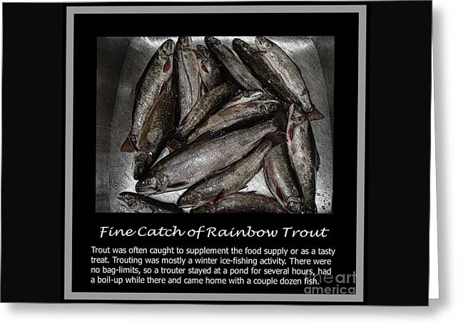 Fine Catch of Rainbow Trout Greeting Card by Barbara Griffin
