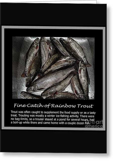 Rainbow Trout Drawings Greeting Cards - Fine Catch of Rainbow Trout Greeting Card by Barbara Griffin