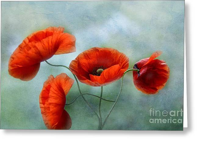Decorativ Photographs Greeting Cards - Fineart-Poppies Greeting Card by Irene Weiss