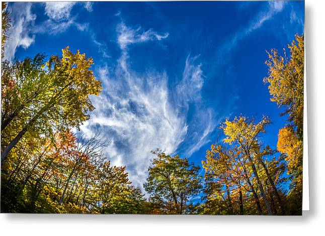 Finger Lakes Fall Day Greeting Card by Gary Fossaceca