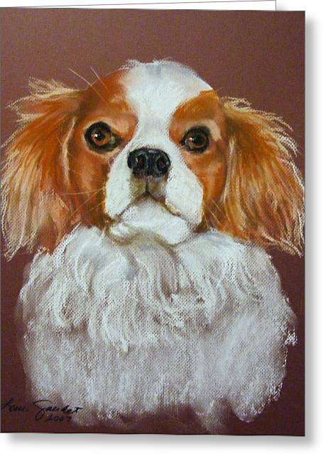 Charles Pastels Greeting Cards - Finnegan the Cavalier King Charles Spaniel Greeting Card by Lenore Gaudet