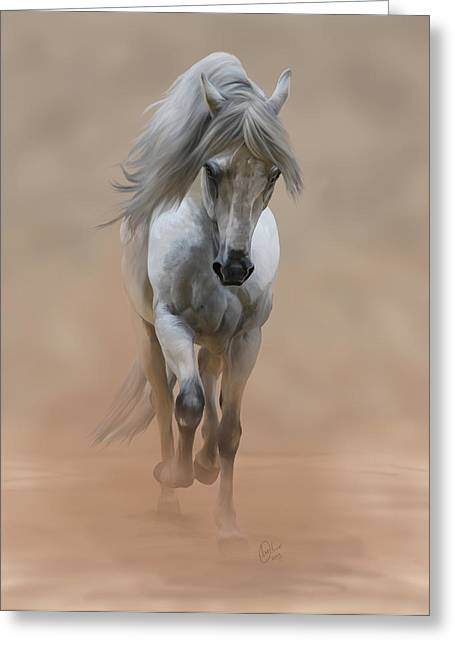Paso Fino Stallion Greeting Cards - Fino Greeting Card by Liz Oliver