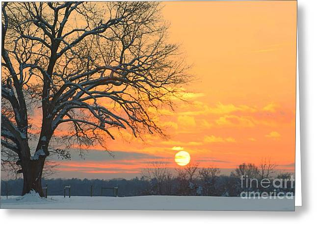 Calm Waiting Greeting Cards - Fire and Ice Greeting Card by Benanne Stiens
