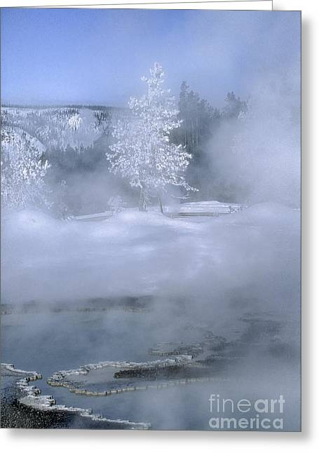 Hoar Frost Greeting Cards - Fire and Ice II - Yellowstone Greeting Card by Sandra Bronstein