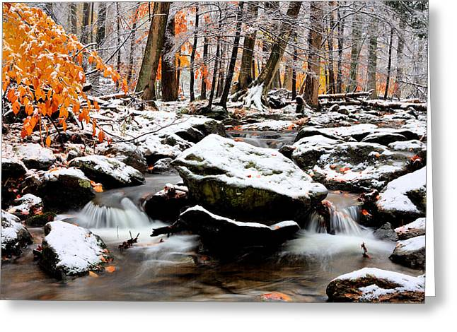 Md Greeting Cards - Fire and Ice Greeting Card by JC Findley