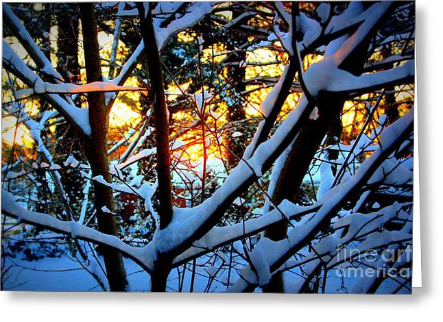 The Sun God Greeting Cards - Fire and Ice Greeting Card by Patti Whitten