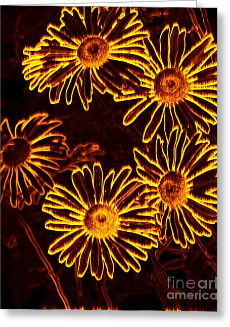Aster Mixed Media Greeting Cards - Fire Daisies Greeting Card by Chalet Roome-Rigdon