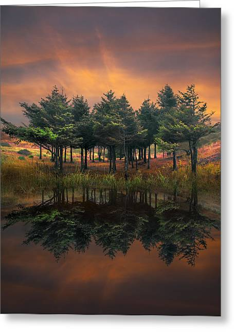 Park Scene Greeting Cards - Fire Greeting Card by Debra and Dave Vanderlaan