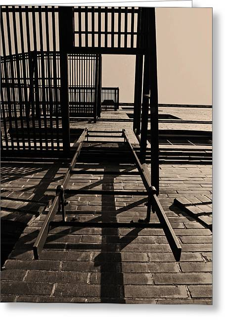 Sky Fire Greeting Cards - Fire Escape Sepia Greeting Card by Don Spenner