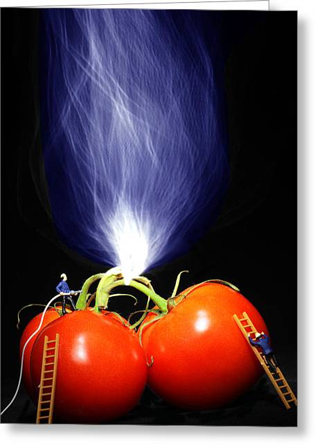 Creative People Greeting Cards - Fire fighting on tomatoes Little People On Food Greeting Card by Paul Ge