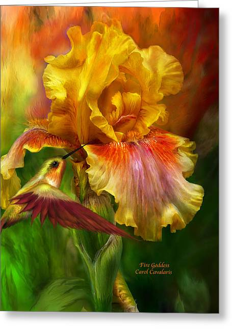 Yellow Bearded Iris Greeting Cards - Fire Goddess Greeting Card by Carol Cavalaris
