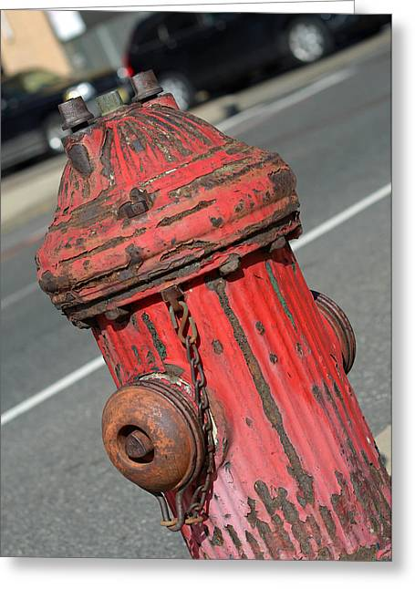 Fire Hydrant Greeting Card by Lisa Phillips