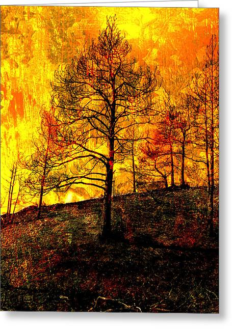 Firestorm Greeting Cards - Fire in the Forest Greeting Card by Fran Riley
