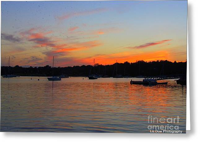 Somes Sound Greeting Cards - Fire in the Sky Greeting Card by Elizabeth Dow