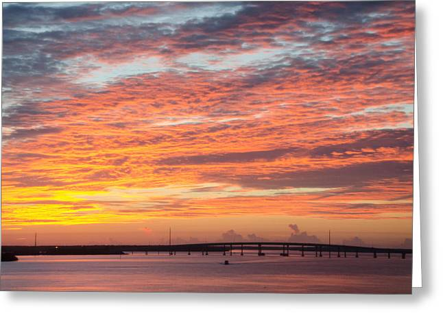 Fire In The Sky Greeting Card by Margaret Pitcher