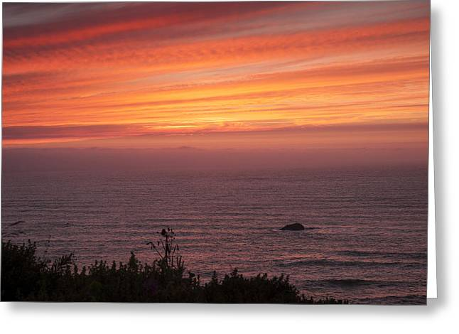 Reflection In Water Greeting Cards - Fire In The Sky Greeting Card by Melany Sarafis