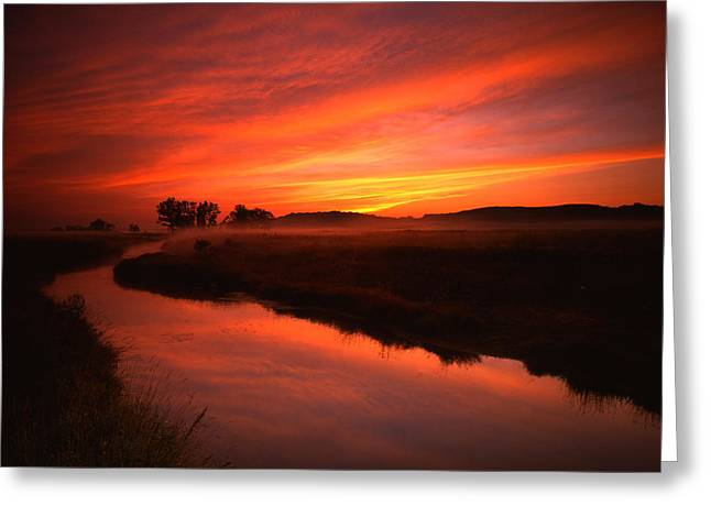 Fire In The Sky Greeting Card by Ray Mathis