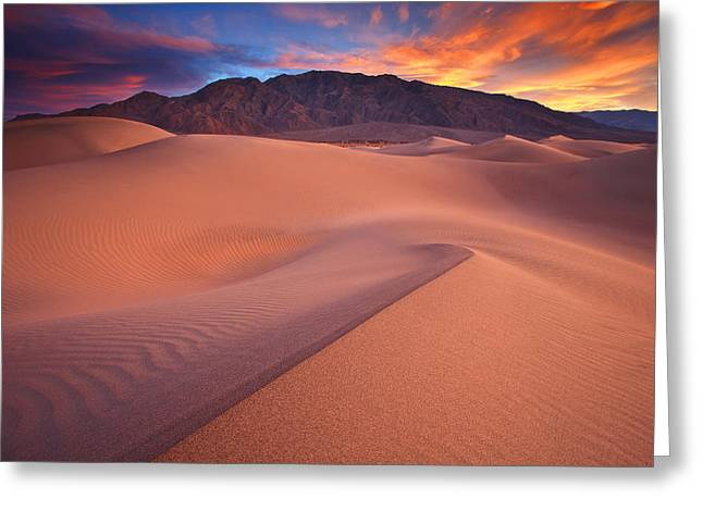 Death Valley National Park Greeting Cards - Fire On Mesquite Dunes Greeting Card by Darren  White