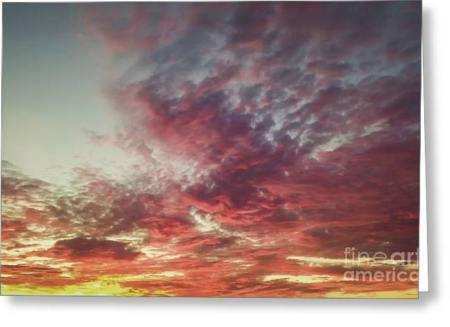 Tree Prints Greeting Cards - Fire Sky Greeting Card by Holly Martin