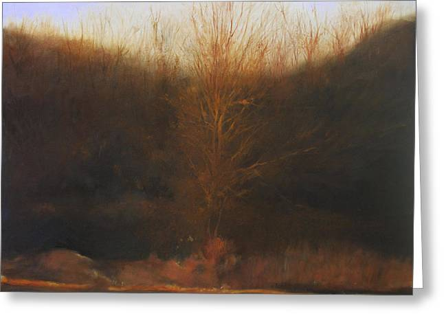 Fire Tree Greeting Card by Cap Pannell