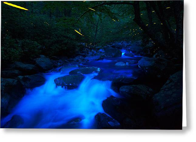 Synchronous Greeting Cards - Fireflies and mountain cascade Greeting Card by Kevin Adams