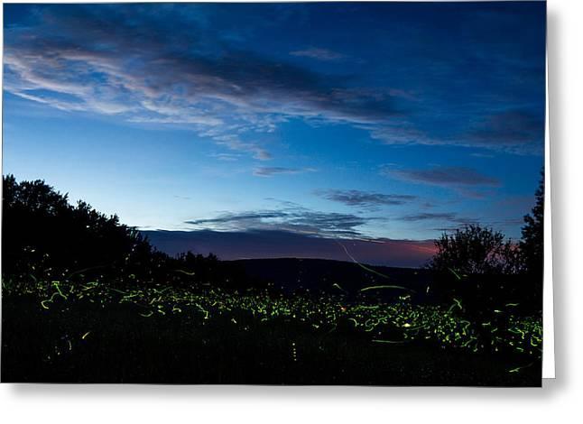 Lightning Bug Greeting Cards - Fireflies at dusk Greeting Card by Chris Bordeleau