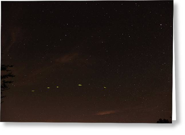 Little Dipper Greeting Cards - Firefly in the Sky Greeting Card by John Flannery