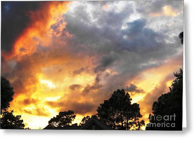 Animals Love Greeting Cards - Firestorm Sunset Greeting Card by Matthew Seufer
