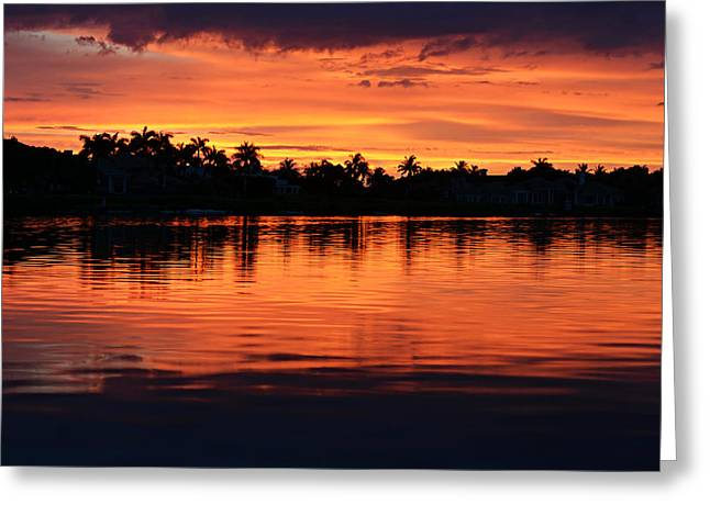 Florida House Greeting Cards - Firewater Greeting Card by Laura  Fasulo