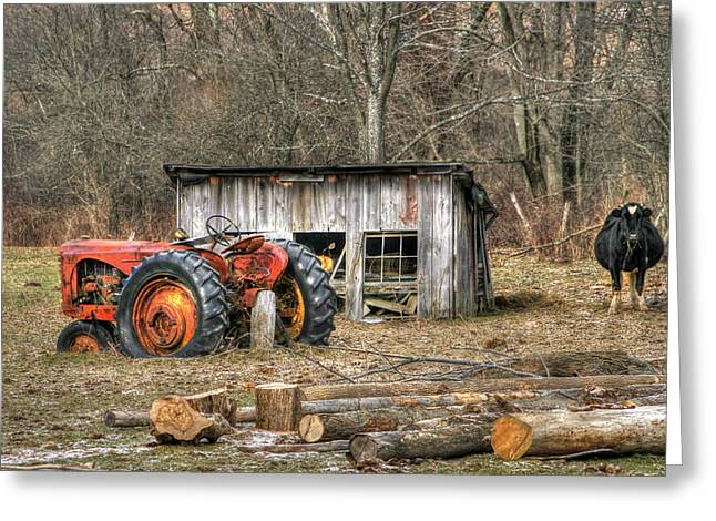 Shed Digital Art Greeting Cards - Firewood Greeting Card by David Simons