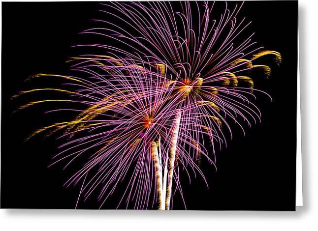 Holiday Blast Greeting Cards - Fireworks 3 Greeting Card by Paul Freidlund
