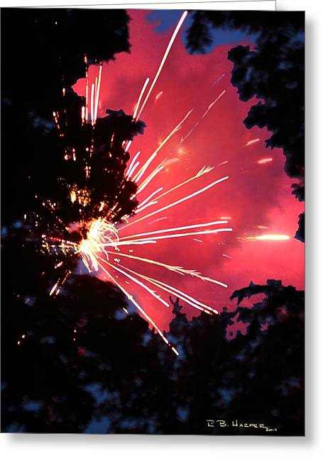 4th July Greeting Cards - Fireworks Forest Greeting Card by R B Harper