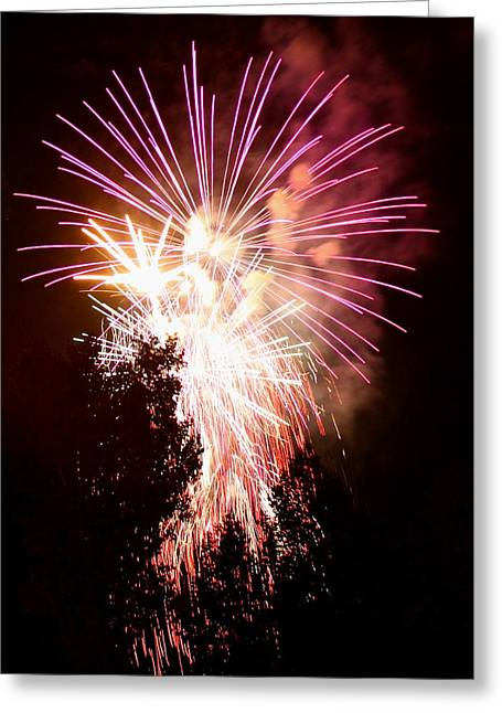 Fire Works Greeting Cards - Fireworks in the tree Greeting Card by Angie Wingerd
