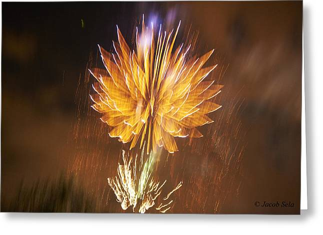 New Years Pyrography Greeting Cards - Fireworks Greeting Card by Jacob Sela