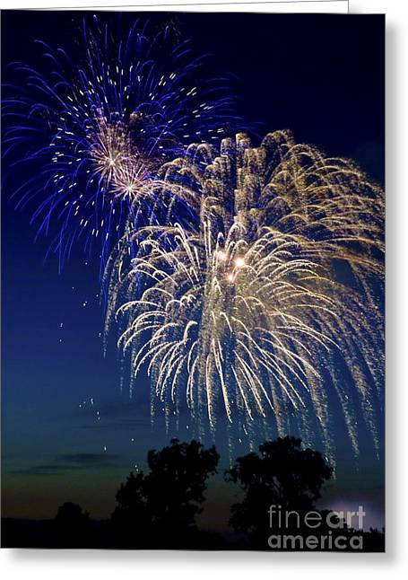 4th July Greeting Cards - Fireworks Greeting Card by Michael Shake