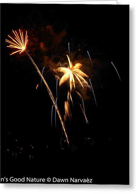 4th July Greeting Cards - Fireworks Over the Lake 2 Greeting Card by Dawn