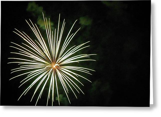 4th July Greeting Cards - Fireworks Over the Lake 32 Greeting Card by Dawn