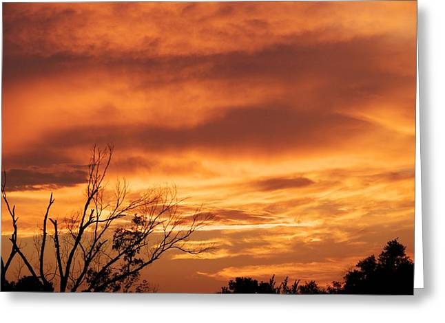 Birght Greeting Cards - Firey sunset Greeting Card by Robert Brown