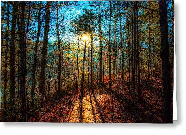 Incline Digital Greeting Cards - First day in Heaven Greeting Card by Optical Playground By MP Ray