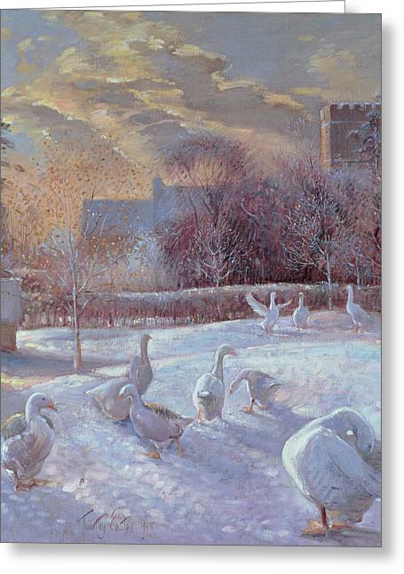Geese Photographs Greeting Cards - First Light, 1994 Oil On Canvas Greeting Card by Timothy Easton