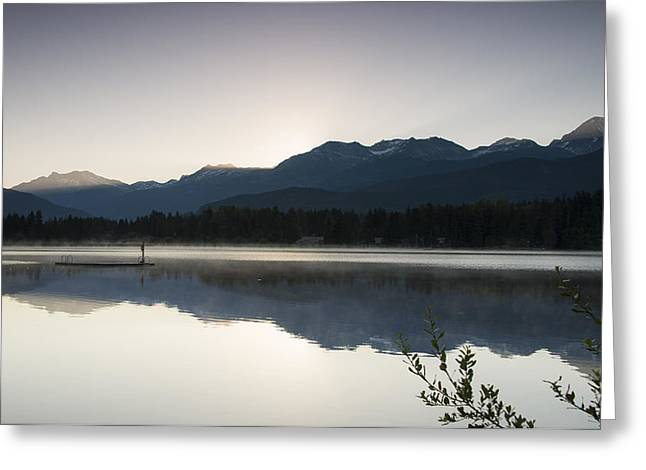 Ducks Lakes Greeting Cards - First Light Greeting Card by Aaron S Bedell