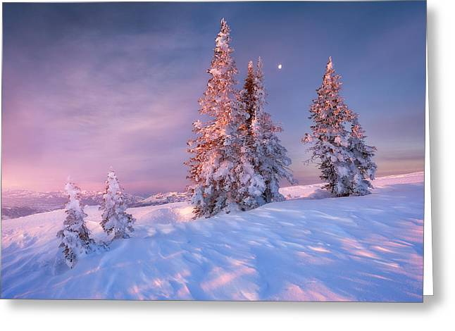 Ski Art Greeting Cards - First Light at Powder Mountain Greeting Card by Rory Wallwork