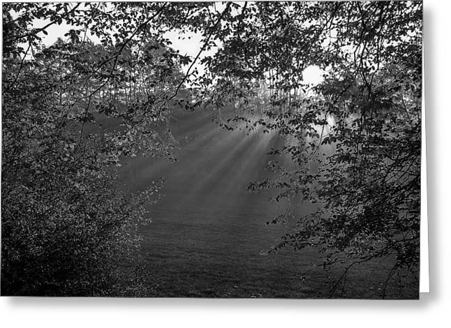 Crepuscular Rays Greeting Cards - First Light of Morning Greeting Card by Mountain Dreams
