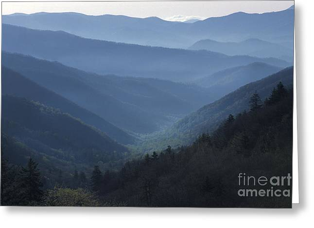 S Landscape Photography Greeting Cards - First Light on Clingmans Dome Greeting Card by Sandra Bronstein
