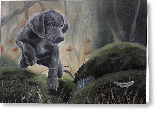 Weimaraner Puppy Greeting Cards - First point Greeting Card by Paul Francev
