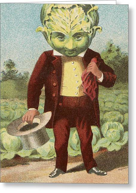 First Premium Cabbage Head Greeting Card by Aged Pixel