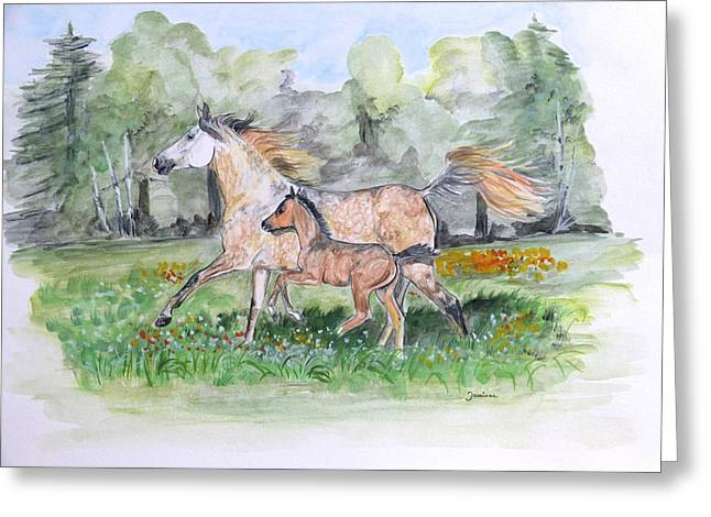 Arabian Horse Original Greeting Cards - First run Greeting Card by Janina  Suuronen