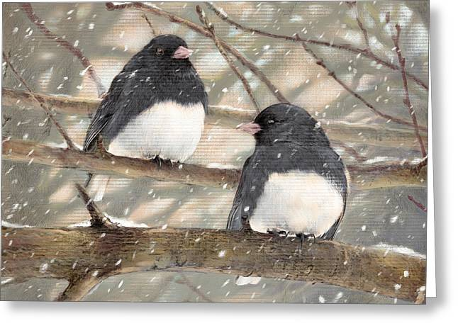 Dark Eyes Pastels Greeting Cards - First Snow Dark-eyed Juncos Greeting Card by Laurie Musser